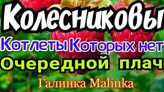 Колесниковы /Обзор новых ВЛОГОВ /Котлеты которых нет/Очередной плач/