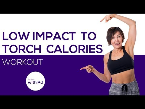 Low Impact Workout to Torch Calories 😅