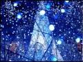 小川七生 - 月灯りふんわり落ちてくる夜