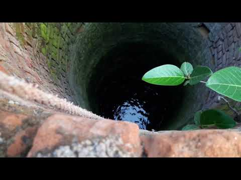 Sharpmitra - Rescue a snake from Well  Cobra venomous snake  Snake rescue team Panchet dam (N G O)