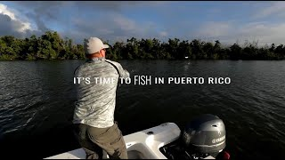 It's Time to Explore in Puerto Rico: Fishing