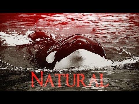 [Natural]