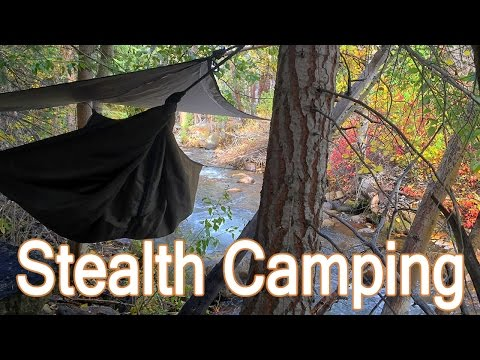Stealth Camping in Lee Vining before Cycling over Tioga Pass into Yosemite