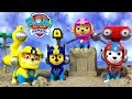 UNBOXING PAW PATROL SEA PATROL COLLECTION WITH MARSHALL SKYE & OTHERS