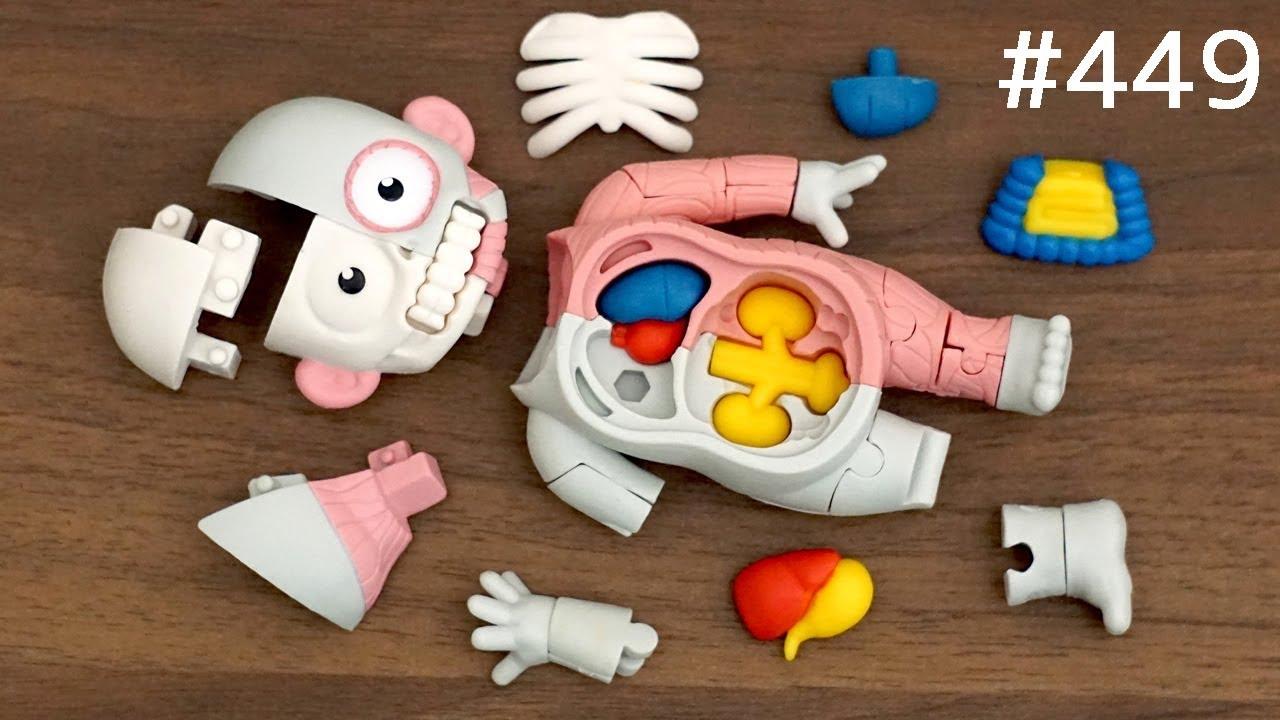 筋肉、内臓がわかる!人体模型パズル / Human anatomical model puzzle. Japanese toy