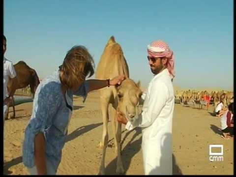 El Viaje de tu Vida - Abu Dhabi