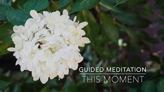 THIS MOMENT: 1 Minute Guided Meditation | A.G.A.P.E. Wellness