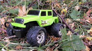 JEEP TOY CAR DRIVING IN FOREST