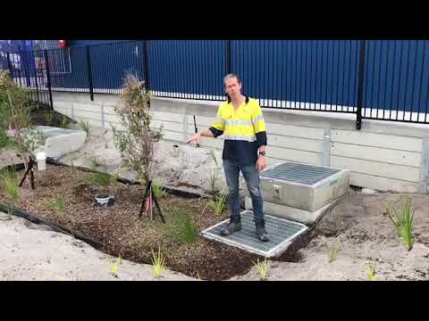Inspection of Filterra Bioretention System