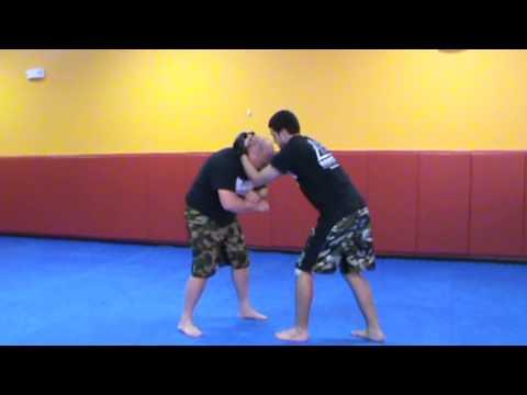 Dauntless MMA Delaware