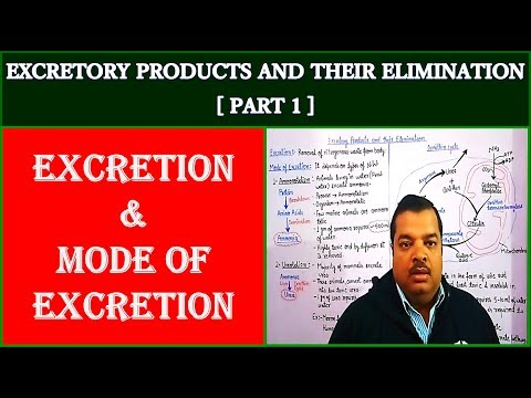 Excretory Products And Their Elemination For NEET | Part 1 | EXCRETION AND MODE OF EXCRETION
