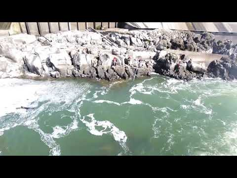 Grand Ronde Tribes Fish At Willamette Falls