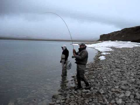 Fly Fishing The Blackfeet Indian Reservation 2011 (Four Horn Lake MONSTER TROUT!) # 2