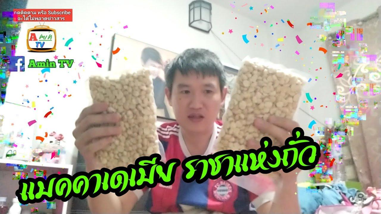 VLOG 17 | รีวิว แมคคาเดเมีย ราชาแห่งถั่ว สั่ง ออนไลน์ หางดง เชียงใหม่ [Amin TV]