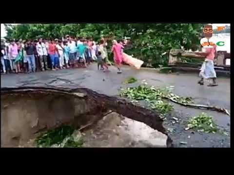 BRIDGE COLLAPSE IN BIHAR INDIA Live