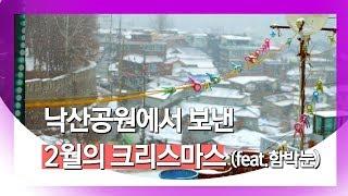 [100초의 눈] 낙산공원에서 보낸 2월의 크리스마스(feat. 함박눈)