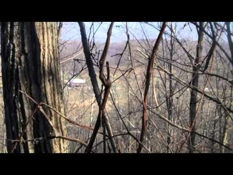 Open Day of Ohio Gun Season 2012