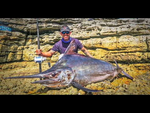 Incredible Footage Of MASSIVE 144kg Black Marlin Caught Off The Rocks At Jervis Bay, NSW