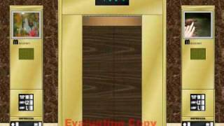 Montgomery LASER-FAST Elevators @ Peach & Daisy's Place Northwest Wing (Animation Video)