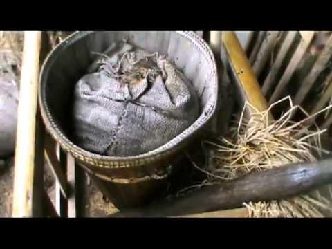 SABAH TOURISM ATTRACTION -  KDCA CULTURAL HOUSES