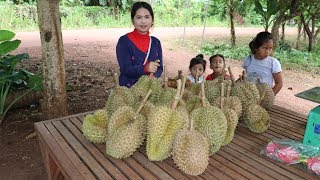 Awesome Fresh Durian Farm - Eating Durian Fruit At Som Lort Battambang Province In Cambodia