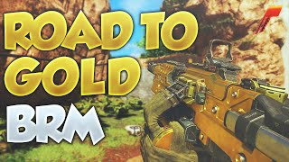 Black Ops 3: Road to Gold (BRM)