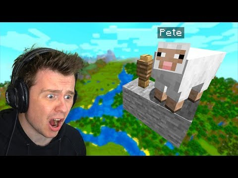 My Friend *HID* My Pet Sheep HERE In Minecraft!