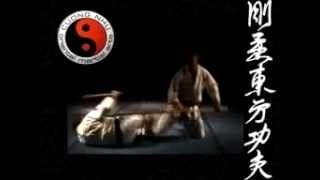 Cuong Nhu Oriential Martial Arts - Overview of Styles