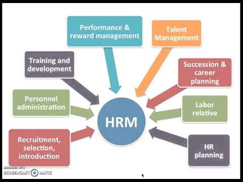 Compare and contrast HRD and HRM