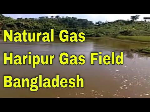 Haripur Gas Field Sylhet || Haripur Gas || Sylhet Gas Outflow || Danger Gas Field In Bangladesh