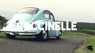 Proj - Coccinelle