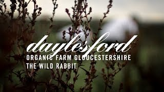 Daylesford & The Wild Rabbit
