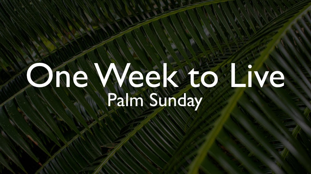 One Week to Live - Palm Sunday