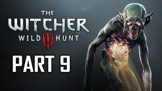The Witcher 3: Wild Hunt Walkthrough Part 9 - Wandering in the Dark (PS4 Let