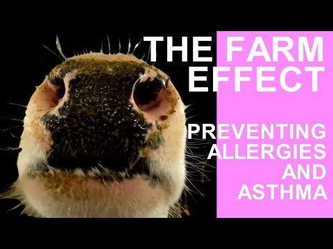 The farm effect: preventing allergies and asthma with Sabina Illi