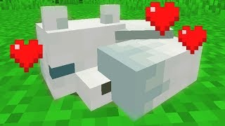 I got a white fox in minecraft (really rare)