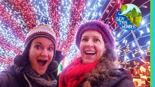 Wonderland of Lights & Color Inspiring Joy & Reflections