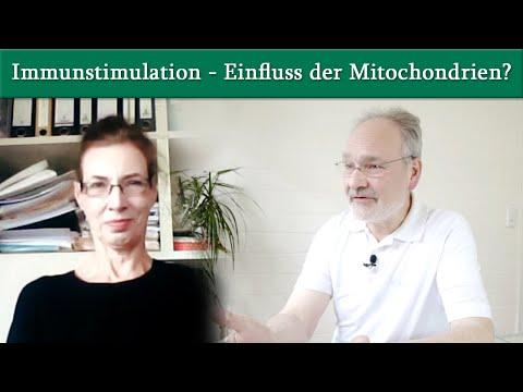Immunstimulation - welchen Einfluss haben die Mitochondrien? Prof. Dr. König im Interview!