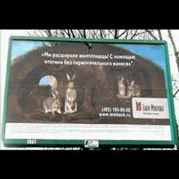 Billboards in Moscow