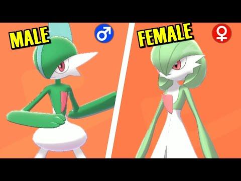 Pokémon Sword & Shield - All Male Vs Female Pokémon Comparison