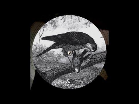Download Karma Kid - Bird Of Prey