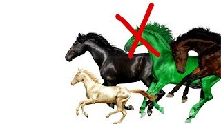 Old Town Road Remix with Mason Ramsey, but Young Thug's parts are cut out