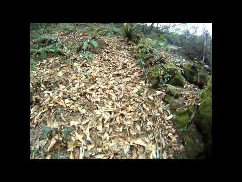 Trail Treino Chaviães 12