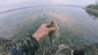 Поймал отпустил Рыбалка на водохранилище