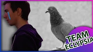 L'assassinat du pigeon de Wakz • TEAM EC