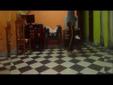 Tobu - Hope [NCS Release] (best shuffle dance)