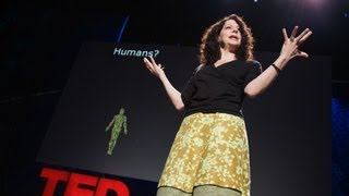 "How bacteria ""talk"" - Bonnie Bassler"