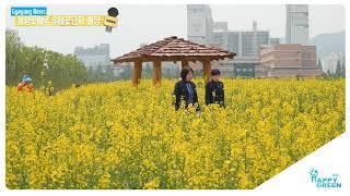 계양꽃마루 유채꽃단지 개장_[2019.5.4주] 영상 썸네일