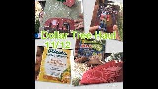 BIG Dollar Tree Haul!! 🛍 what did I find? 11/12