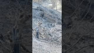 КИПР влог ПОЖАР что сейчас происходит на месте пожара shorts